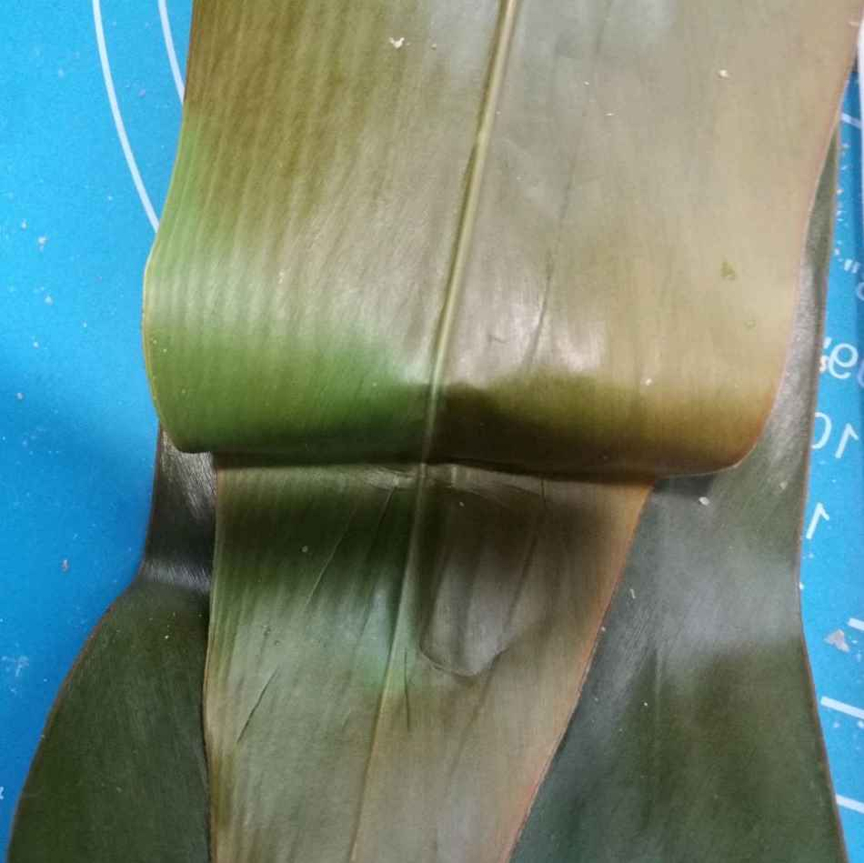 Fold up the tail of the leaf to cover the yellow rice cake